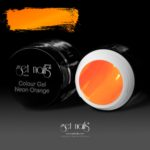 Colour Gel Neon Orange 5g