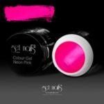 Colour Gel Neon Pink 5g