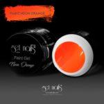 Paint Gel Neon Orange 5g