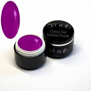 Colour Gel Celosia Purple 5g